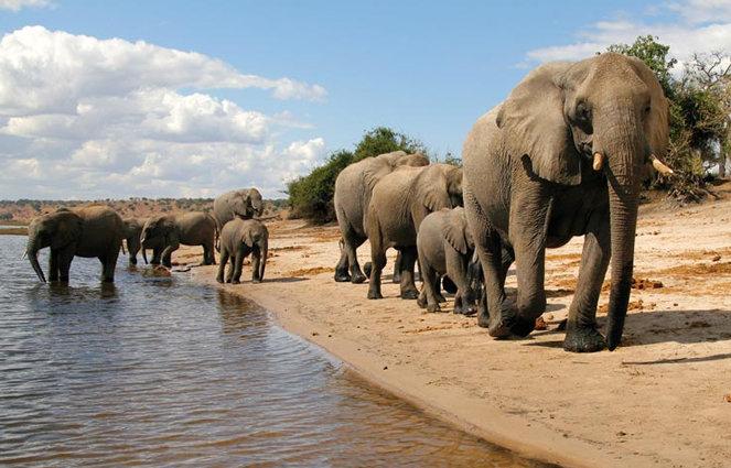 I went toBotswana!