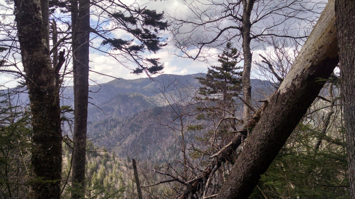 One day of Amazing Adventure in the Great Smoky Mountain NationalPark