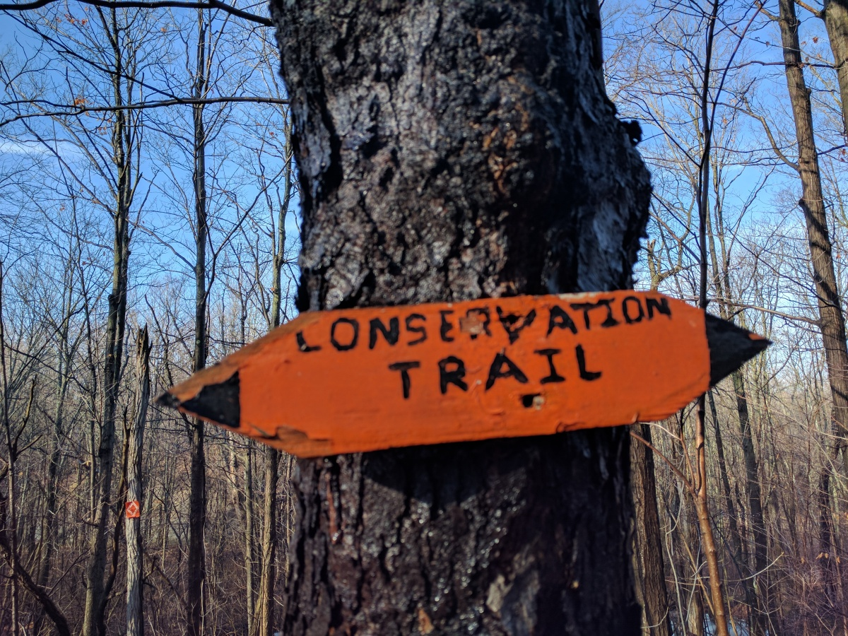Conservation Trail – Mammot Rd to SumnerRd